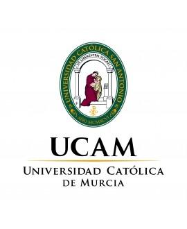 Grado en derecho (Universidad Católica de Murcia)