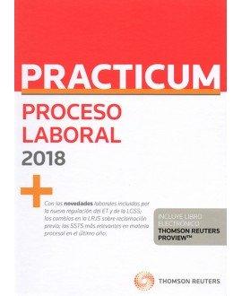 Practicum Proceso Laboral 2018