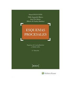 Esquemas procesales. 6ª Edición
