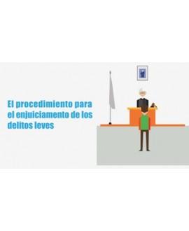 Curso online El procedimiento para el enjuiciamiento de los delitos leves