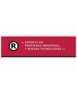 Título Experto en Propiedad Industrial y Nuevas Tecnologías