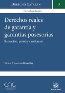 derechos-reales-de-garantia-y-garantias-posesorias_9788490860304