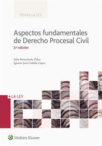 0001194_aspectos_fundamentales_de_derecho_procesal_civil_300