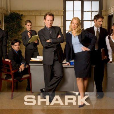 16. SHARK